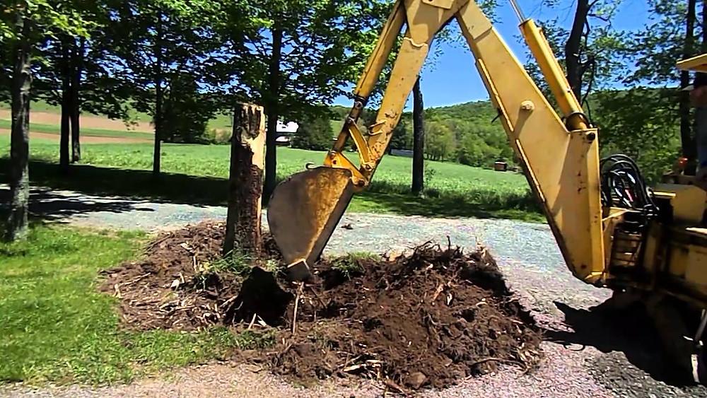 Stump Digging