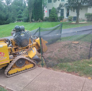 Stump removal - fencing