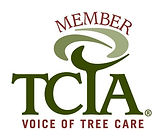TCIA-logo-1.jpg
