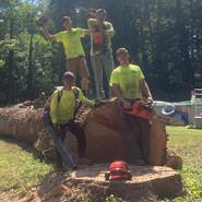 Miles Tree - Crew