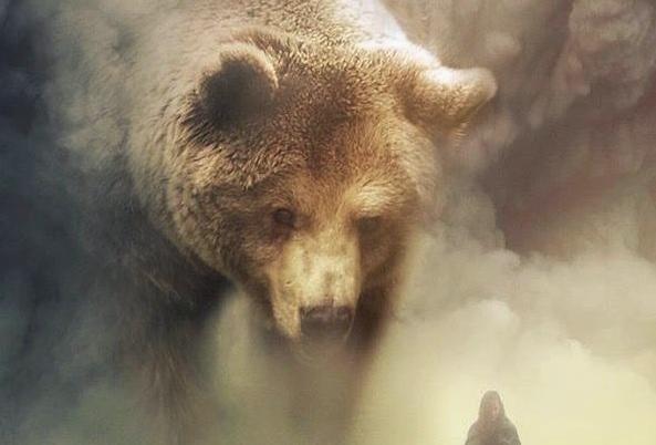 Remote Shamanic journeying - meet your spirit power animal or helping spirit
