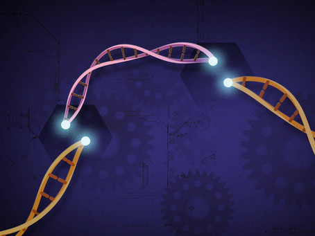 A Pragmatic Path for Genetic Editing