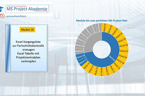 Schritt 16 zum perfekten MS Project Plan