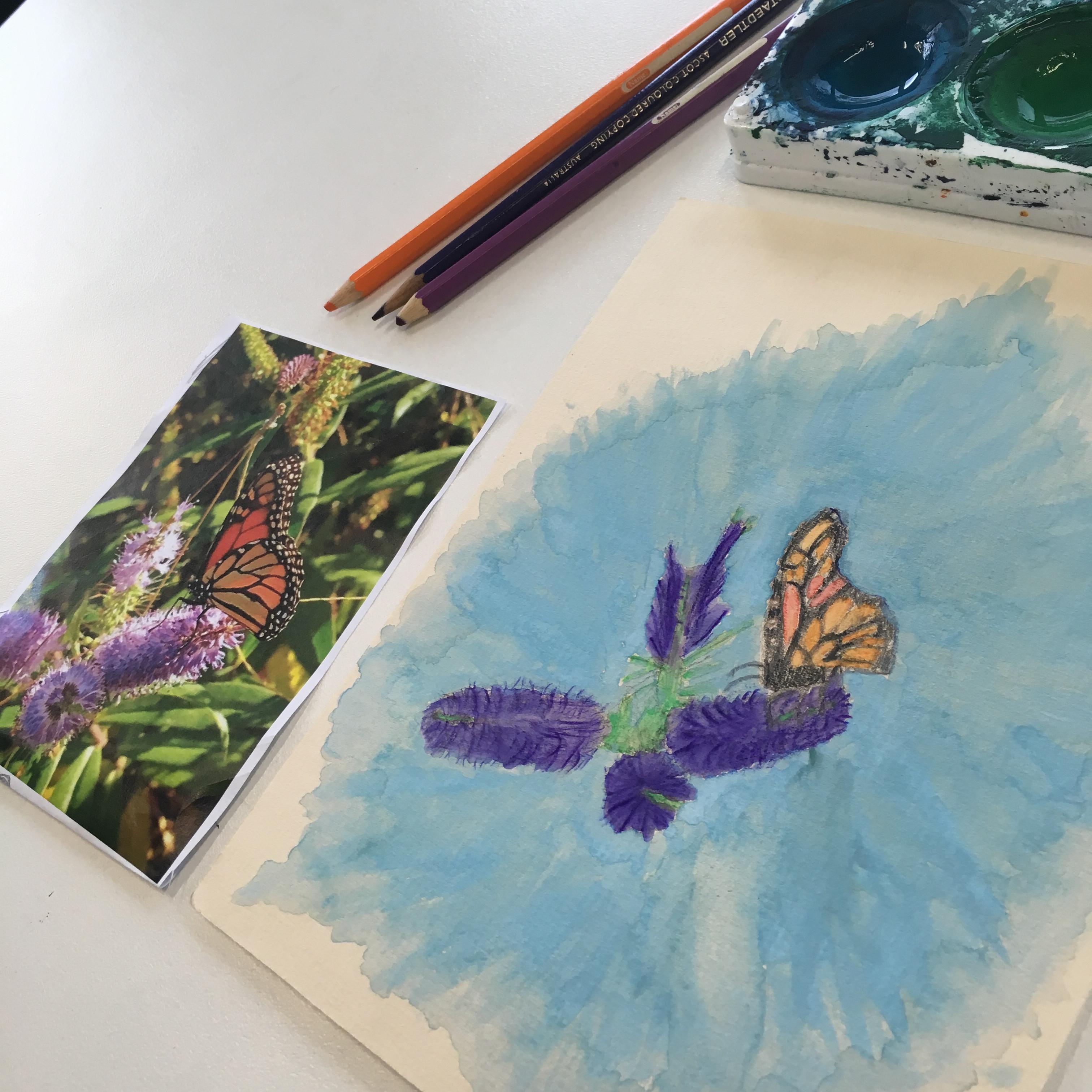 Senior Draw & Paint Club 9-15 yrs Term3
