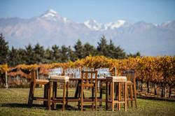 Almoço - Aniversário de 50 anos em um local super sofisticado de Mendonza, Argentina, The Vines, que