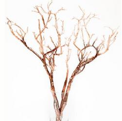Twigs flexíveis