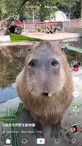 WhatsApp Image 2018-10-12 at 11.42.59 AM