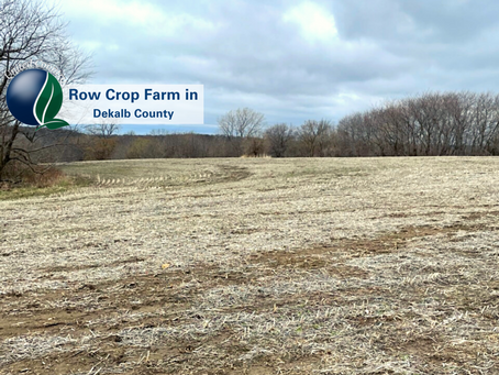 SOLD - Row Crop, Pasture and Hunting - 100+/- Acres in Dekalb, MO