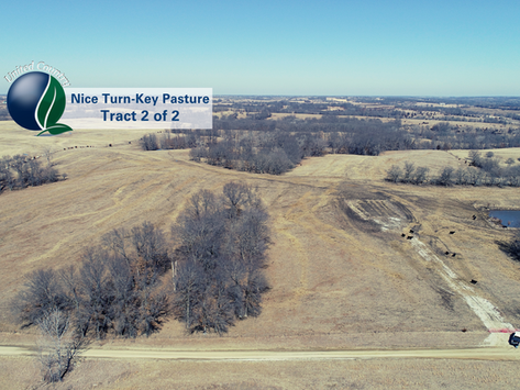 SOLD - 79+/- Acres, Nice Turn-key Pasture, Tract 2 of 2