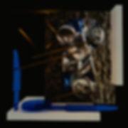 s9_raphaelmoreiragoncalves.jpg