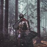 knight-4698269_1920.jpg