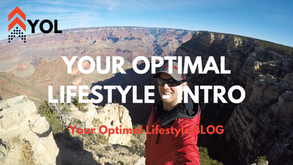 Your Optimal Lifestyle - Introduction