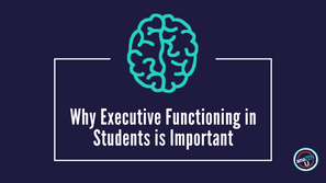 Why Executive Functioning in Students is Important