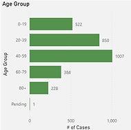 Age Group Covid Graph Oakville 20210228.