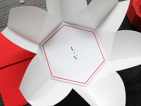 Red & White Origami Invite [2].JPG