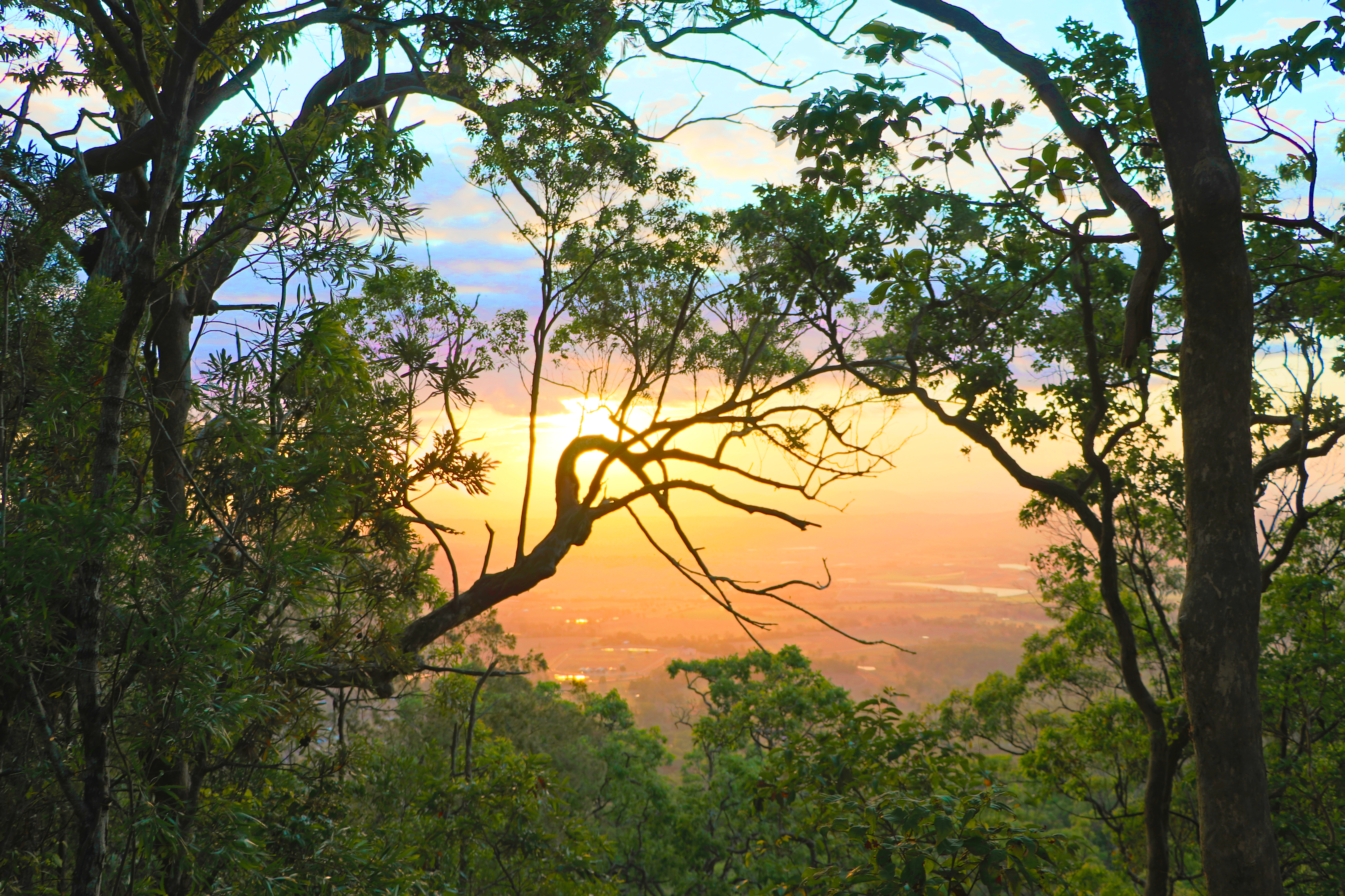 Tamborine Mountain Sunset