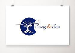 Logo Emerg & Sens