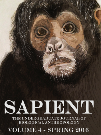 vol4_sapient.PNG