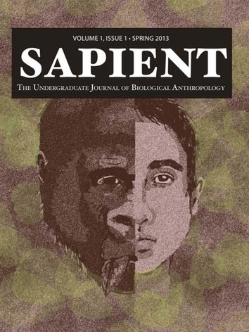 vol1_Sapient.PNG