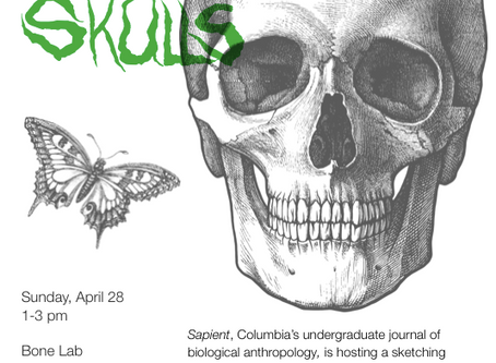 Event: Sketching Skulls (and free brunch) on Sunday, April 28!