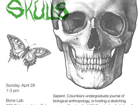 Event: Sketching Skulls (and free brunch) on Sunday, April 28!