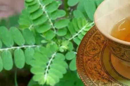 Chá para prevenir pedras nos rins, aliviar os sintomas de dor e prevenir pedras na vesícula