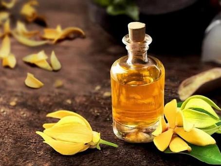 Benefícios deste óleo essencial: Ylang Ylang