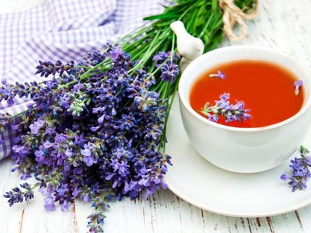 Chá de alfazema: Propriedades e benefícios