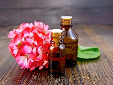 Qual óleo pode ser indicado para menopausa e TPM? O Óleo de Gerânio.