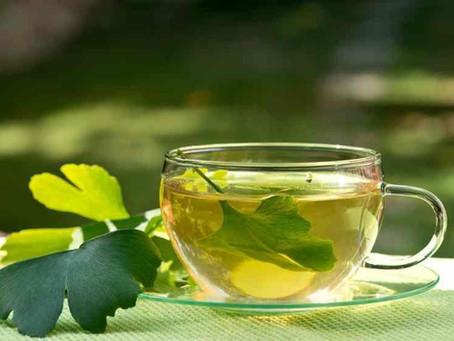 Qual os benefícios do chá de Ginkgo biloba?