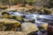 river-1822930_1280.jpg