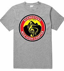 2018 Scenesters T-Shirt GREY