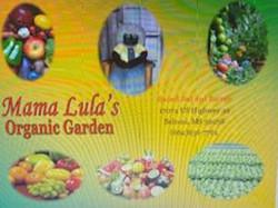 Lula's Organic Garden