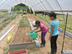 Girls in greenhouse