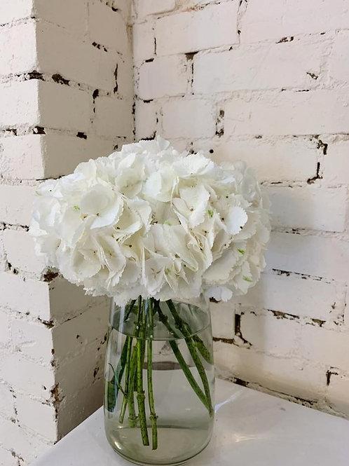 White Hydrangea Bouquet