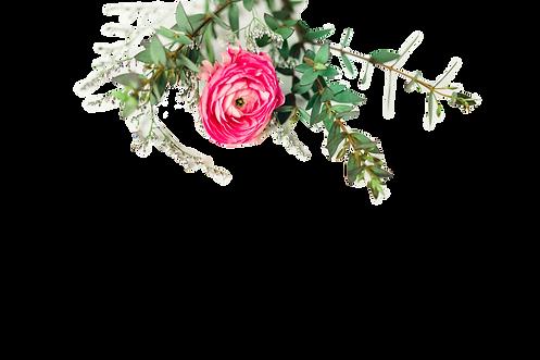 websiteflowers-2_edited.png