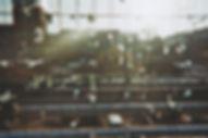 Natürlich Berlin Photo Series Warschauer Bridge