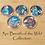 Thumbnail: 5pc Breath of the Wild Amiibo Collection