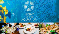 The Vancouver Aquarium