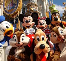 Disney World Family Experience