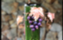 Hummingbird winebottle feeder.jpg