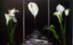 art panel アートパネルインテリア商品フラワーインザナイト