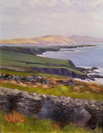 Dingle Coastline Ireland