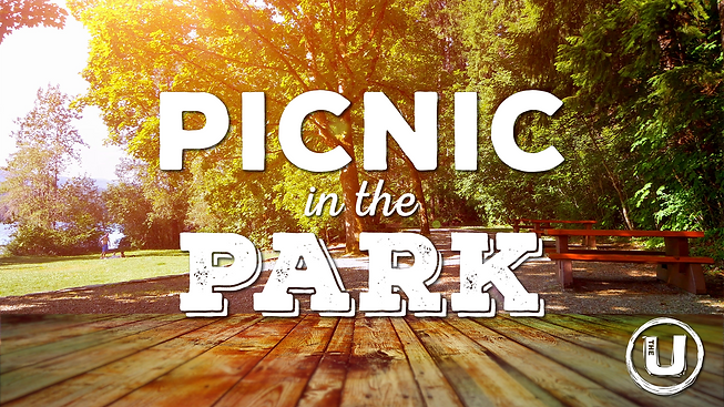 Picnic in the Park.png