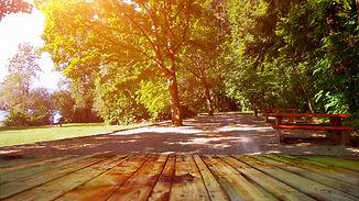 park table.jpg