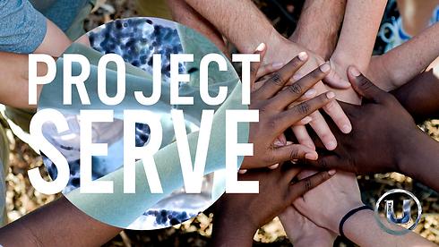 Project Serve.png