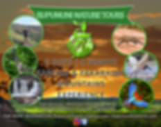 Rupununi Nature Tour Rupununi Eco Hotel Packages