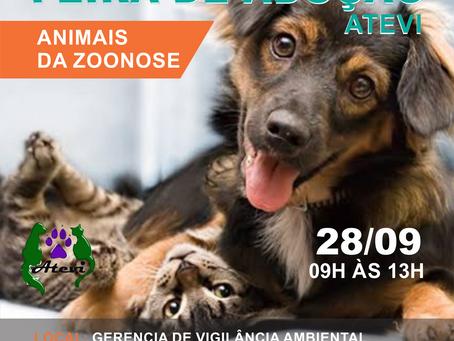 28/09 - 3° Feira de Adoção da Zoonoses DF 2019