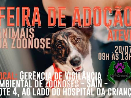 20/07 1° Feira de Adoção da Zoonoses de 2019
