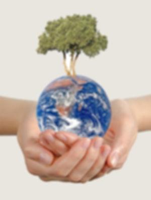 aktuelle Initiativen für eine bessere Welt